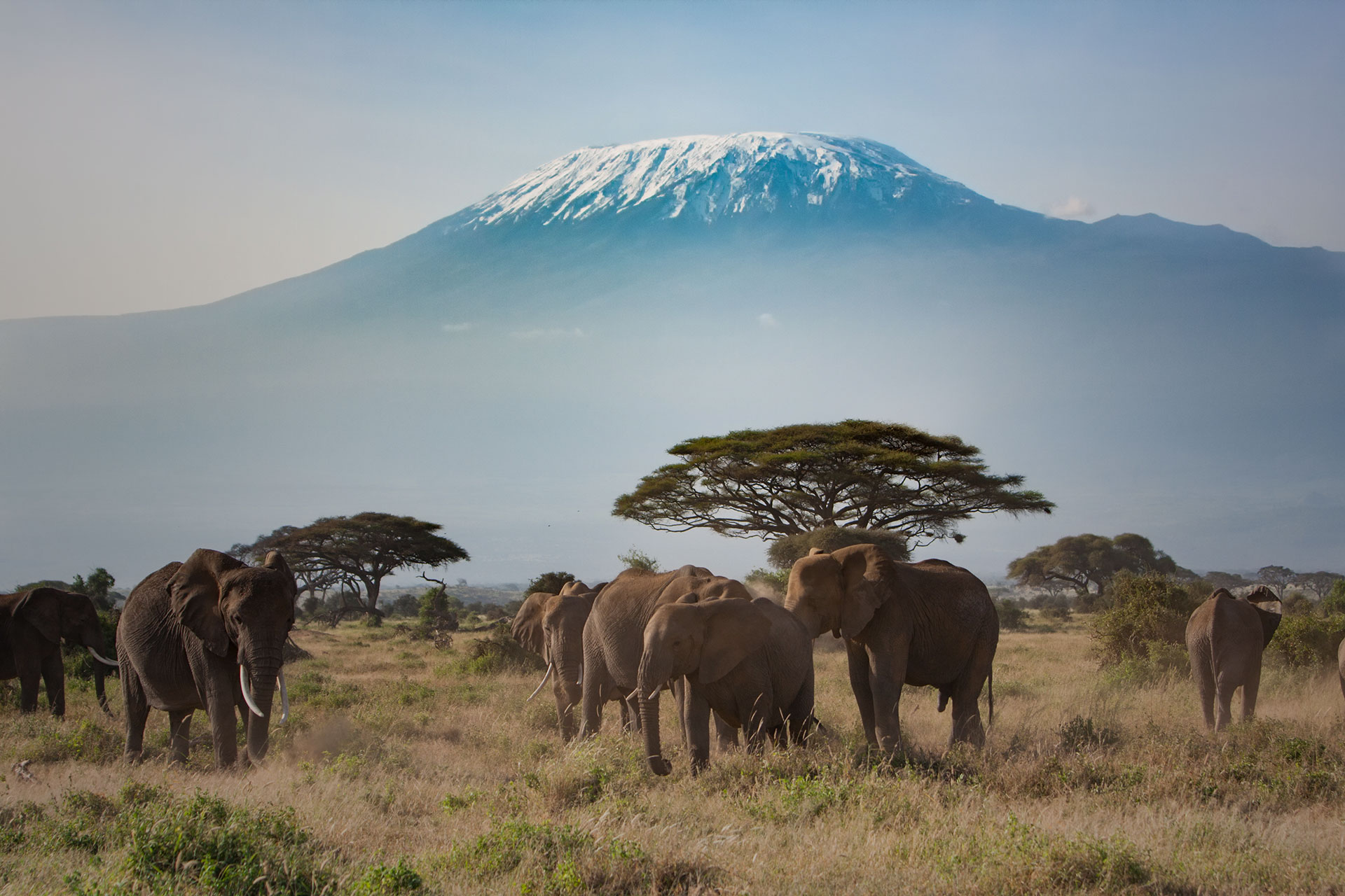 Top 3 must see natural wonders - Mount Kilimanjaro